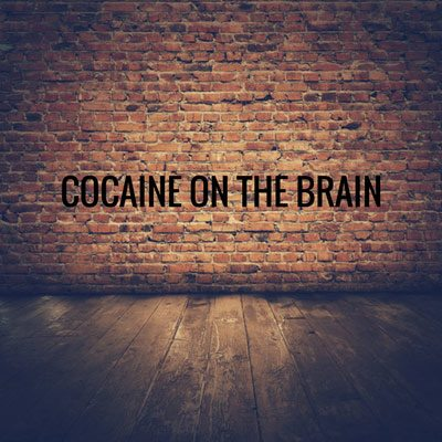 brick wall wood floor with words Cocaine on the Brain - cocaine side effects - cocaine addicting - cocaine addict - cocaine addiction - cocaine addicting